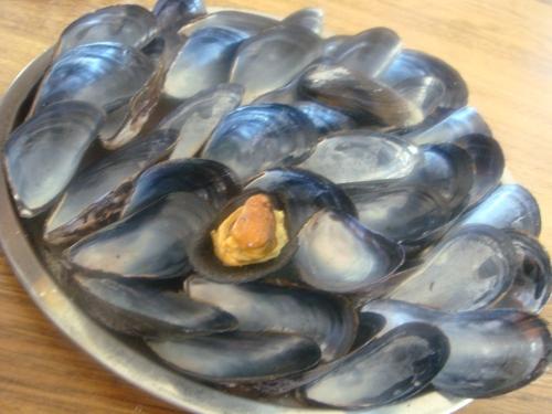 Noma snack Dagnje u umaku od plodova mora