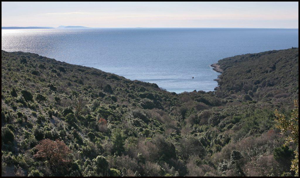 PLAN PLOVIDBE: Sedmodnevno krstarenje jedrilicom po Kvarnerskim otocima 8. Uvala Kruscica na Cresu Foto MickMorton Wikimedia Commons