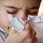 GRIPA I PREHLADA: Kako se liječiti medom, propolisom, matičnom mliječi i peludom